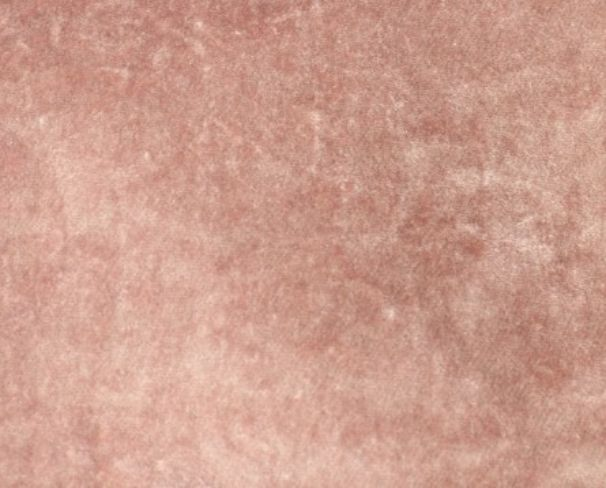 Pastiche Plain Blush Fabric