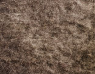 Pastiche Plain Cocoa Fabric