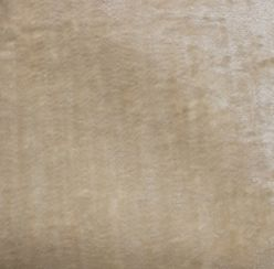 Pastiche Slub Cream Fabric